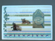 """deco design animaux chaton chat magnet petite decoration : Plaque """"chatons"""" PM 13"""