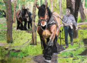 dessin animaux debardage cheval dessin crayon : Débardage au cheval