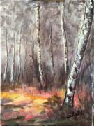 tableau paysages : Sous-Bois de Bouleaux