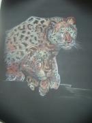 dessin animaux leopard felin couple : deux léopards