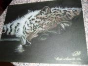dessin animaux leopard felin pose force : what a wonderful life VENDU
