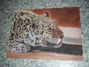 dessin animaux leopard felin chasse : léopard à l'affut OEUVRE VENDUE