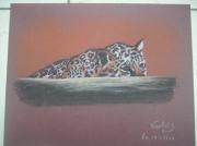 dessin animaux leopard felin affut : a l'affut
