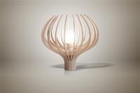 Luminaires ; Lampe eco design en bois, Bleuet