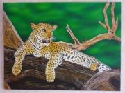 tableau animaux : Le Léopard