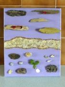 tableau marine marine bois flotte sable coquillage : sable doré 2