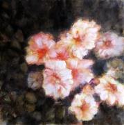 tableau fleurs fleur romantique nature bouquet : Lavatera