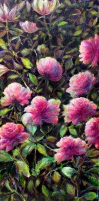 Les fleurs roses