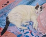 tableau animaux chat : chat couché sur un coussin