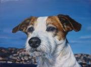 tableau animaux chien mer : Portrait de chien jack russel