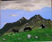 tableau paysages montagne cheval nature pyrenees : Tabe Ariège