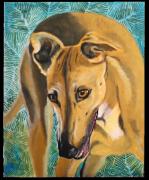 tableau animaux galgo chien ami fidele : Havane