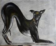 tableau animaux chien galgo levrier espagnol : Eduart