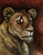 tableau animaux afrique fauve regard lion : la sentilnelle