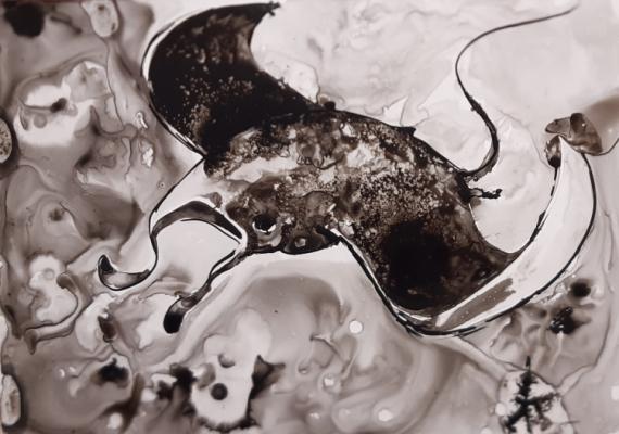 TABLEAU PEINTURE raie manta océan marine sea shepherd Animaux Encre de Chine  - danse de raie