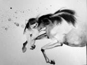dessin animaux mouvement cheval noir joie : la joie 2