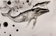 tableau animaux baleine ocean encre yupo : baby whale