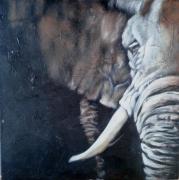 tableau animaux elephant afrique nature portrait : éléphant