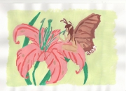 dessin fleurs fleur : Fée des fleurs