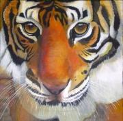 tableau animaux tigre acrylique : Regard de bête N° 4
