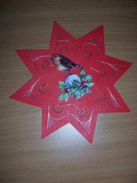 Carte étoile oiseau