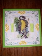 autres animaux mesange oiseau broderie carte : cartebrodée mesange