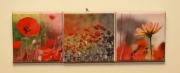 tableau fleurs coquelicot fleur nature rouge : Triptyque 3