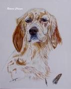 tableau animaux : portrait