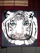 tableau animaux tigre oeil blanc tiger : TIGRE BLANC