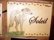 bois marqueterie animaux chien whippet bois portrait : PYROGRAVURE DE CHIEN WHIPPET