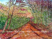 tableau paysages automne balade forÊt nature : BALADE D'AUTOMNE