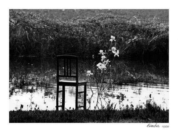 PHOTO chaise eau Paysages  - Perception 001