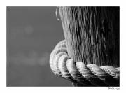 photo nature morte corde bois : Perception 069