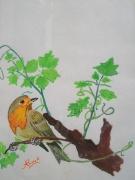 tableau animaux rouge gorge cep oiseau maroc : Rouge gorge sur cep