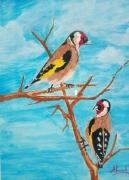 tableau animaux oiseaux chardonneret maroc : Chardonneret