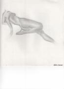 dessin nus nue femme sans tete croquis : Femme Nue
