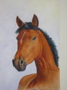 tableau : portrait de cheval