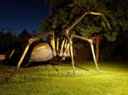 sculpture animaux araignee noire sculpture : araignée