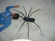 sculpture animaux spider giant fun : araignée