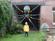 sculpture araignee noire sculpture : araignée géante