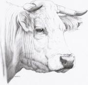 tableau animaux animaux vache mine grasse : Majorette