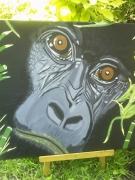 tableau animaux afrique gorille animaux nature : Gorille