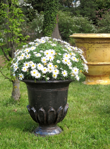 ARTISANAT D'ART FRENCH PLANTERS Pots de Jardins  - Petit Nymphéa