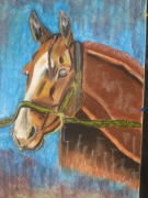 tableau : CHEVAL