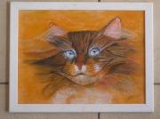 "tableau animaux : "" le chat """