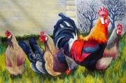 tableau animaux coq poule : La cour