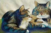 tableau animaux chats : Les 2 chats