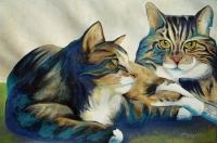 Les 2 chats