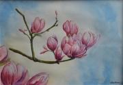 tableau fleurs fleurs printemps : Magnolia