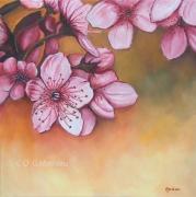 tableau fleurs amandier florale : Printemps